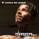 Camino del animal